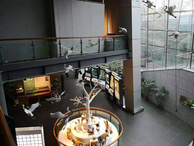 浦东新区沙盘模型制作价格